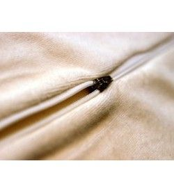 Cover for medium Classic Orthopaedic Pillow in ivory velour